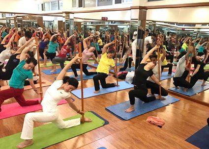 Dấu hiệu để bạn nhận biết một HLV yoga gậy chuyên nghiệp