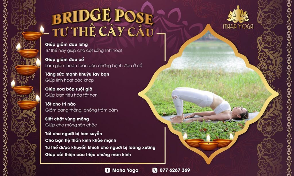 bridge-yoga-tu-the-cay-cau