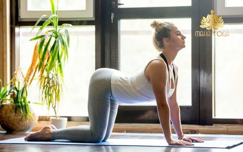 yoga tri lieu tap luyen yoga tri lieu tai binh duong yoga tri dau lung yoga giai toa cang thang yoga tri thoai hoa dot song co